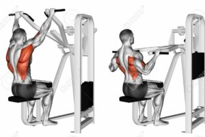 Here is Why Lat Pull Down Machines are best for Muscle Growth