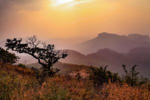 5 Best Hill Station of India to Escape Summer Heat
