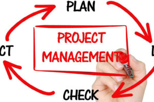 Do you know the basics of Project Management?